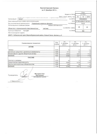 Бухгалтерский баланс на 31 декабря 2013
