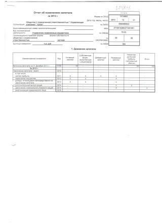 Бухгалтерский баланс на 31 декабря 2013 (5)
