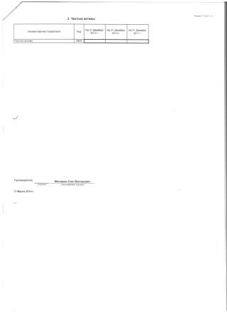 Бухгалтерский баланс на 31 декабря 2013 (8)
